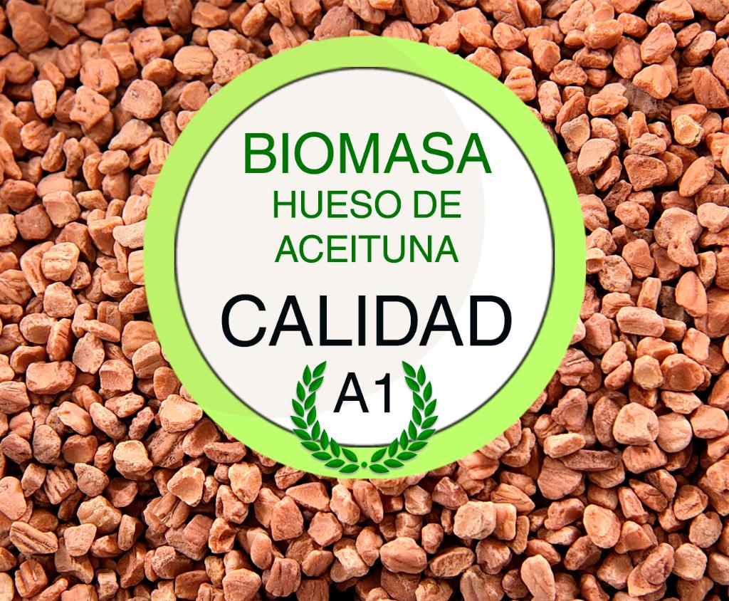 Biomasa hueso de aceituna limpio y seco a granel calidad A1